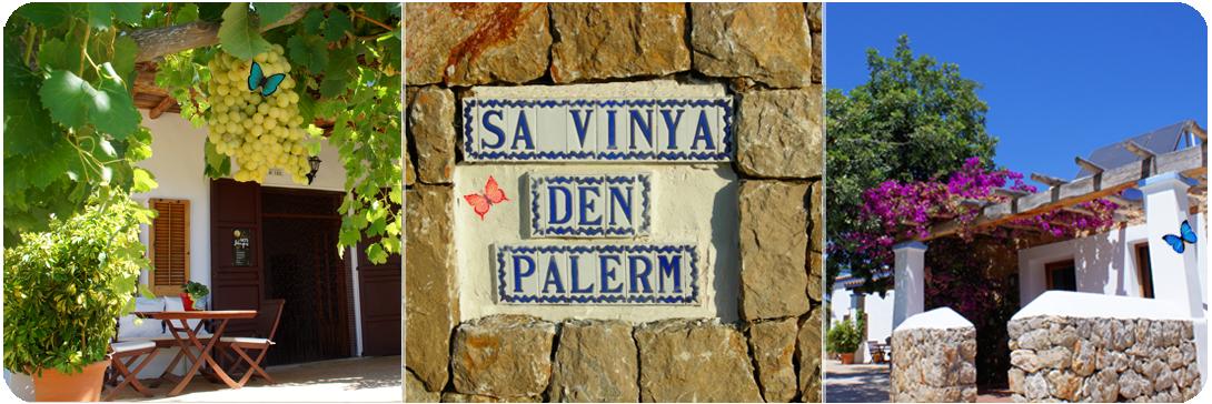 slide_vinya